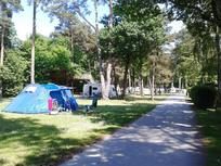 Camping pitches-4