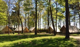 Gemeubileerde tent Amazone
